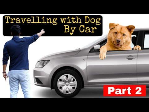 Travelling with Dog by car part-2 |  डॉग के साथ कार में ट्रैवल कैसे करें | Pet Care Tips and Tricks