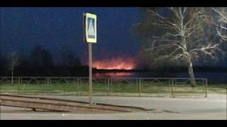 Пожар в Пригороде Тамбова, горела сухая трава 17 04 2019