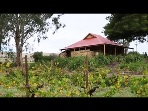 When in South Australia, Jacob's Creek Wine Place is a must-visit