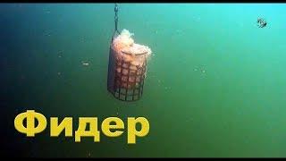 Первая ПРОБА снять под водой ФИДЕРную оснастку- пока не очень удачно.Рыбалка