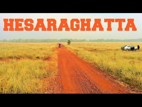 Early morning ride to Hesaraghatta grasslands