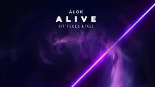 Alive (It Feels Like) | Alok | 1 Hour