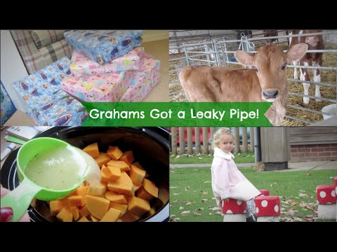 Grahams got a leaky pipe! | Weekly Vlog #28