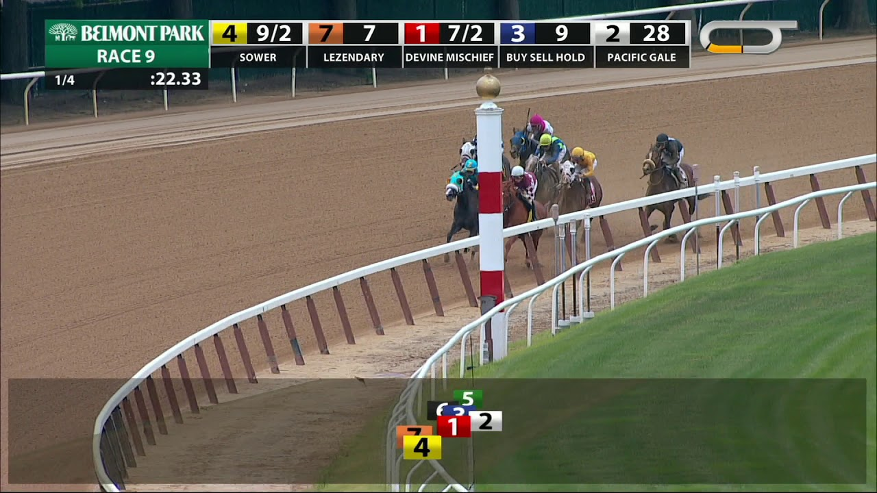 Sower - 2018 - The Jersey Girl Stakes en Espanol