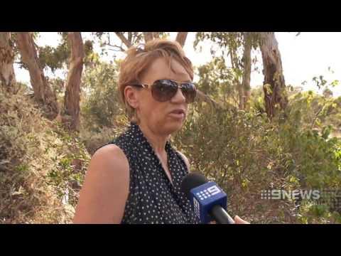Suburban Alert   9 News Adelaide