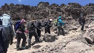 Savannah To Summit Kilimanjaro Expedition