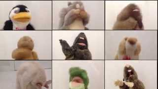Groundhog Day - 2015 Original Song by Mr. Groundhog & Friends