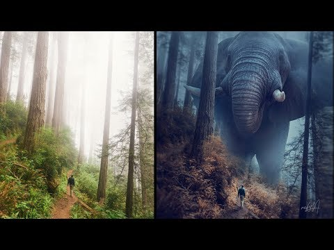 Big Elephant Effect Photo Manipulation Photoshop Tutorial