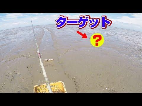 まさに「泥船?大人の泥遊び?」ガタスキーに乗って釣る生き物とは…