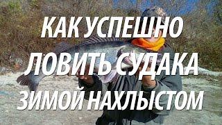 СУДАК ЗИМОЙ НА ОТКРЫТОЙ ВОДЕ. ЗИМНЯЯ РЫБАЛКА НА КУБАНИ НАХЛЫСТОМ(Рыба судак зимой на открытой воде. Великолепная зимняя рыбалка нахлыстом на Кубани. Как ловить судака зимой..., 2017-01-19T16:30:01.000Z)