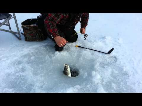 Ice Fishing Video In British Columbia Canada