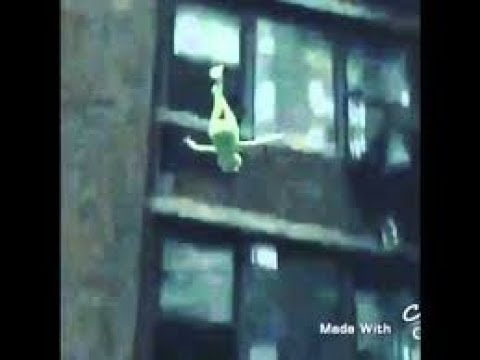 Kermit The Frog Falls Off Roof Vine Youtube