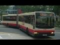 SMRT Bus Service 187, TIB1180P (Full Trip)