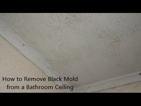 How to Remove Black Mold from a Bathroom Ceiling - YouTube