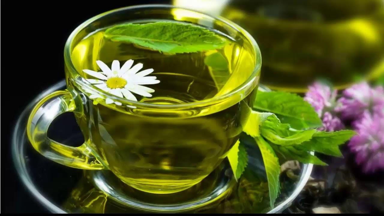 зеленый чай когда лучше пить утром