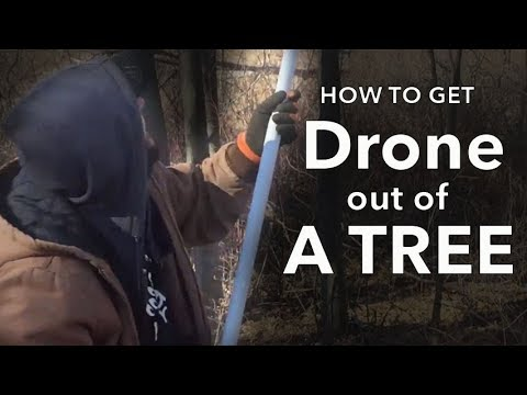How To Get A Drone Out Of A Tree After A Flyaway (Unnecessarily Epic Version)