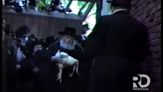 Raw Footage: Kaparos & End of Shachris, 5743