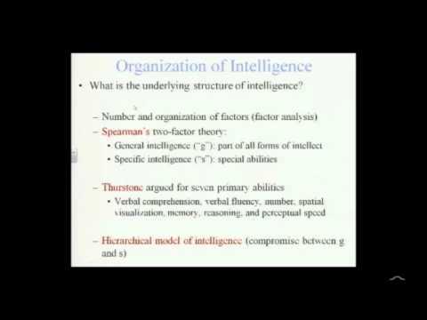 Organization of Intelligence
