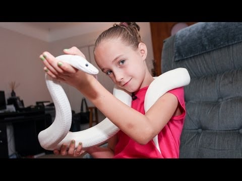 9-Year-Old Snake Handler Krista Guarino