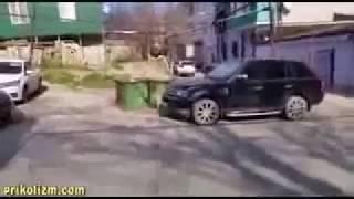 Лучшие Приколы в Coub -смешное видео собака ждет почту - Девушка достает языком Парень