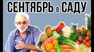 Садовые работы в СЕНТЯБРЕ / Игорь Билевич