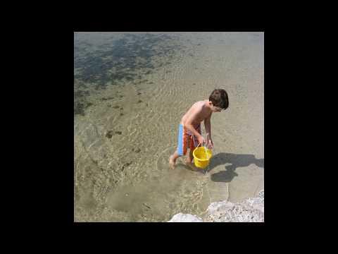 Matheson Hammock Park- Biscayne Bay- Miami