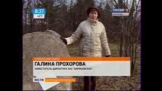 Утро России - Вологодская область (05.11.2014, 8:35)