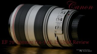 Canon EF 70-300mm f/4-5.6L IS USM Long Term Review