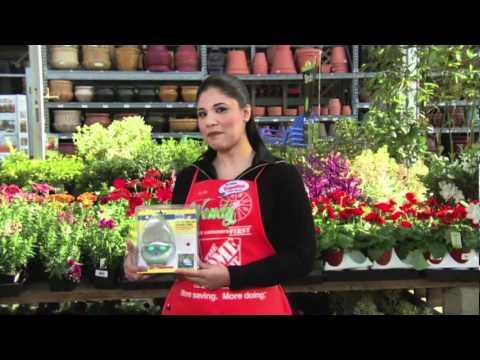 C mo decorar un jard n para una ocasi n especial youtube - Decorar un jardin ...