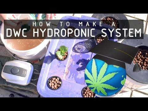 DWC - Deep Water Culture Setup & Operation Tips Guide