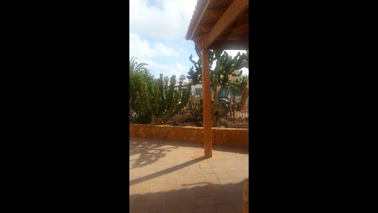 Castillo Playa Bungalows Part - 33: Castillo Playa Bungalows