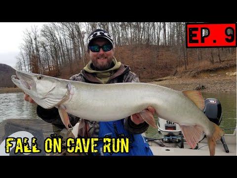 Cave Run Lake MUSKY Hunt - FALL Live Bait (Turkey Bowl Tournament)