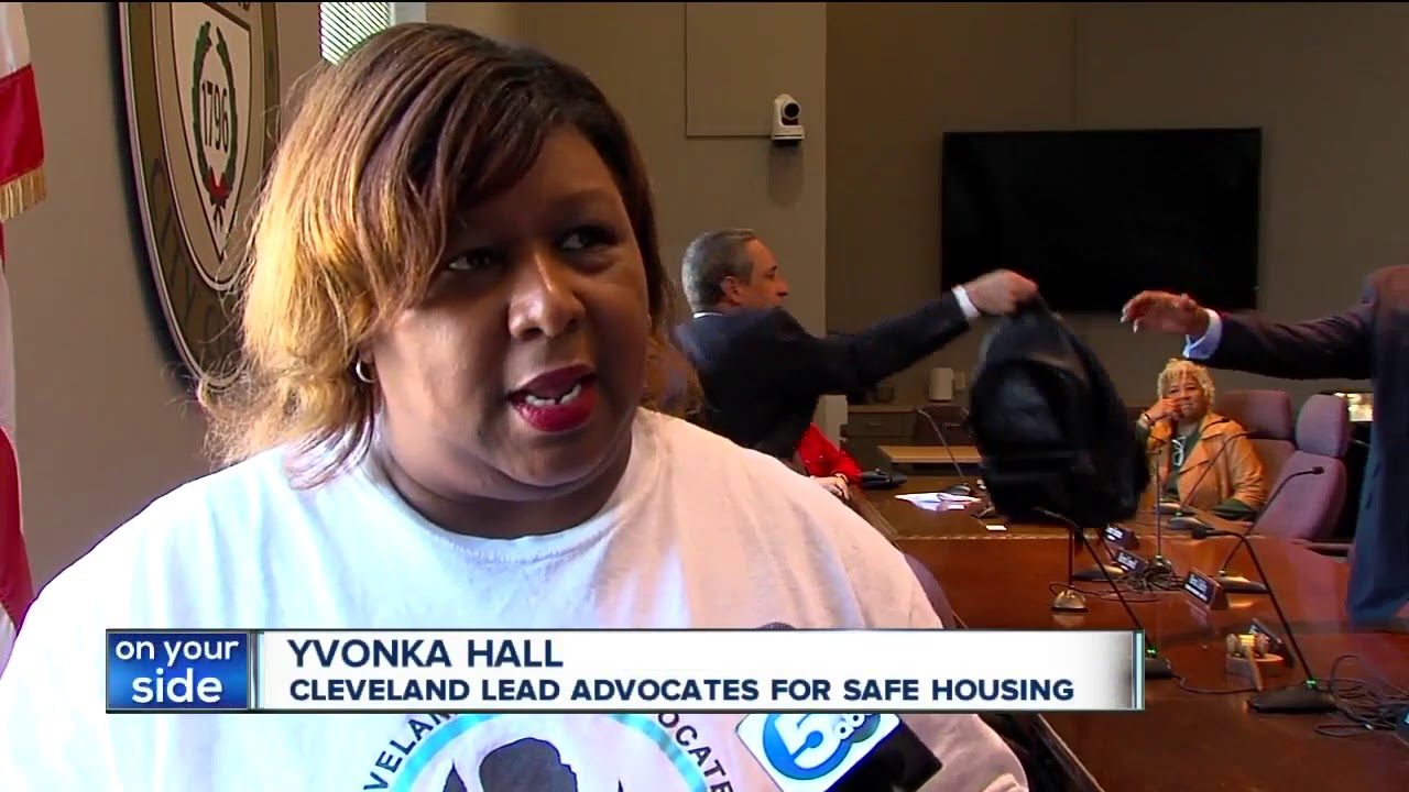 Council hears recommendations on possible fixes to city's lead crisis