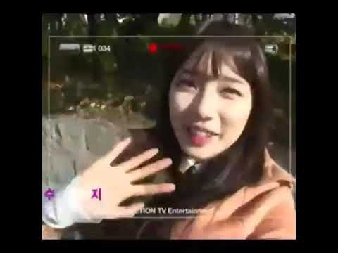 Suzy Bae 수지