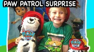 Paw Patrol Surprise With Paw Patrol Toys, Talking Marshall, Surprise Eggs, Blind Bags