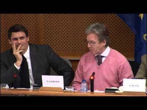 European Parliament Workshop on Sustainable Biofuels clip