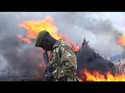 Kenya torches world