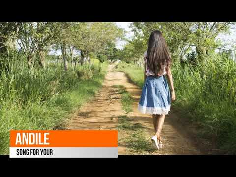 Andile - Song For You
