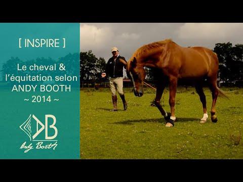 Le cheval et l'équitation selon Andy Booth