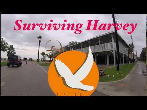 Surviving Harvey