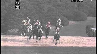 [大竹柵から]1991(H3)中山大障害・秋