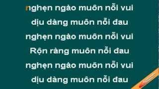Neu Co Yeu Toi Karaoke - Dam Vinh Hung - CaoCuongPro