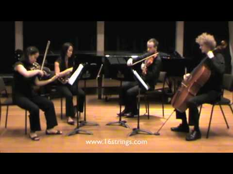 Only Exception, Paramore  16 Strings String Quartet Remix