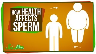 How Health Affects Sperm