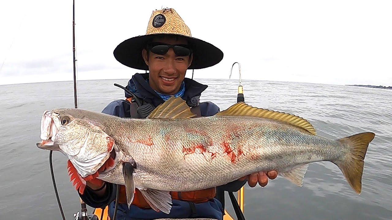 WHITE SEABASS FISHING: The Most Elusive Fish on the California Coast