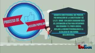 TRIBUNAL CONSTITUCIONAL DEL PERÚ 2017 Video