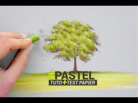 Coloriage Arbre Du Ciel.Peindre Un Arbre Au Pastel Tuto Et Test Papier