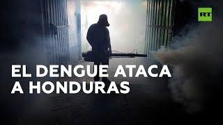 Más de 88 niños han muerto de dengue este año en Honduras