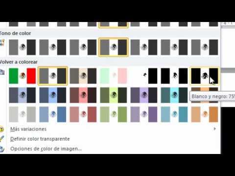Como pasar imagenes de color a blanco y negro en word 2010
