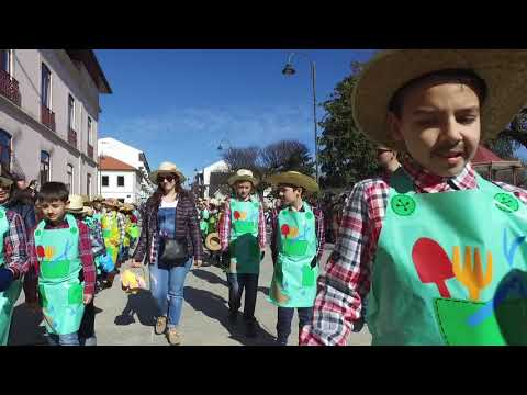 Centenas de foliões desfilaram no Carnaval de Valpaços